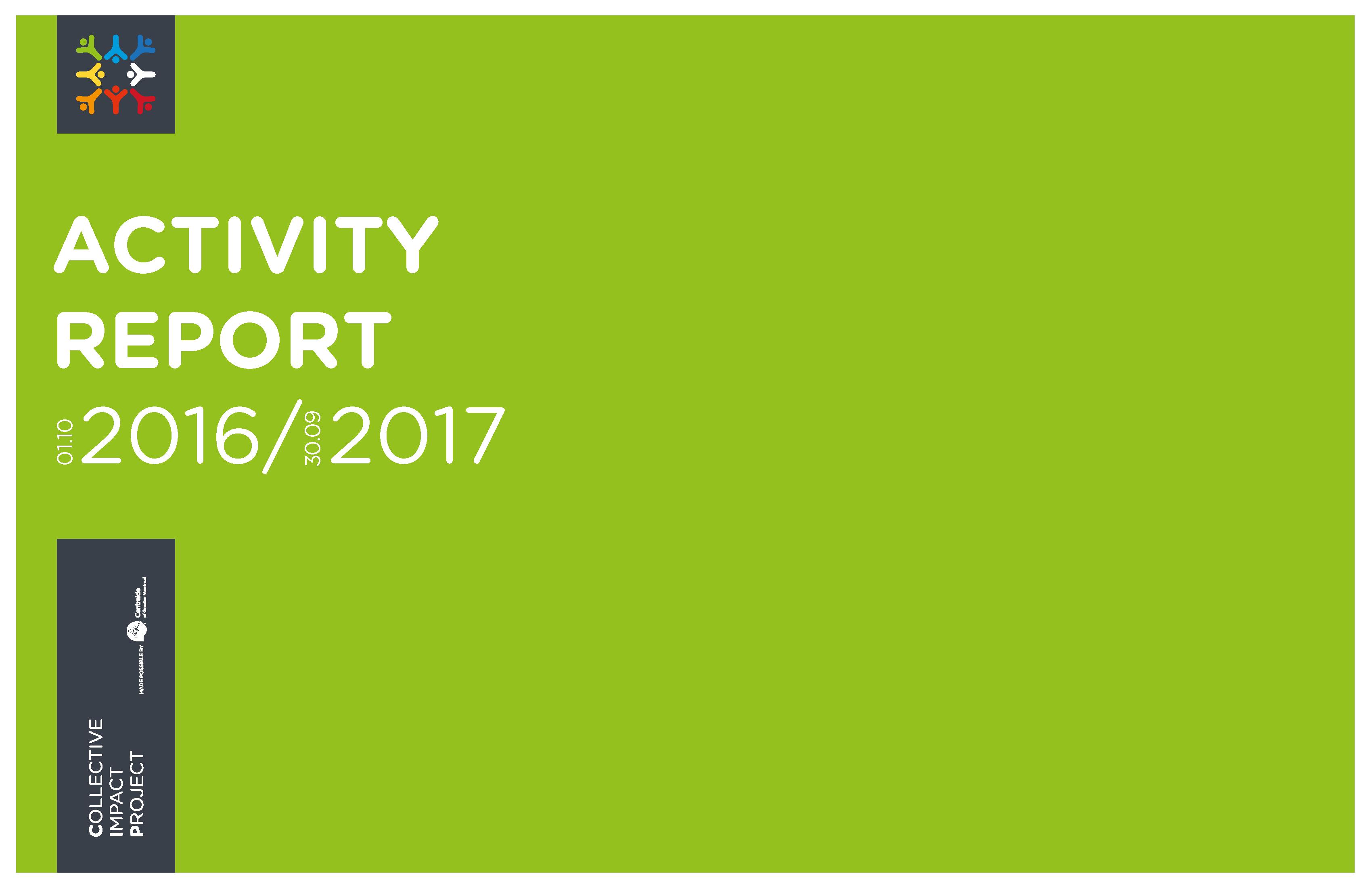 picrapportactivite_2016-2017-en