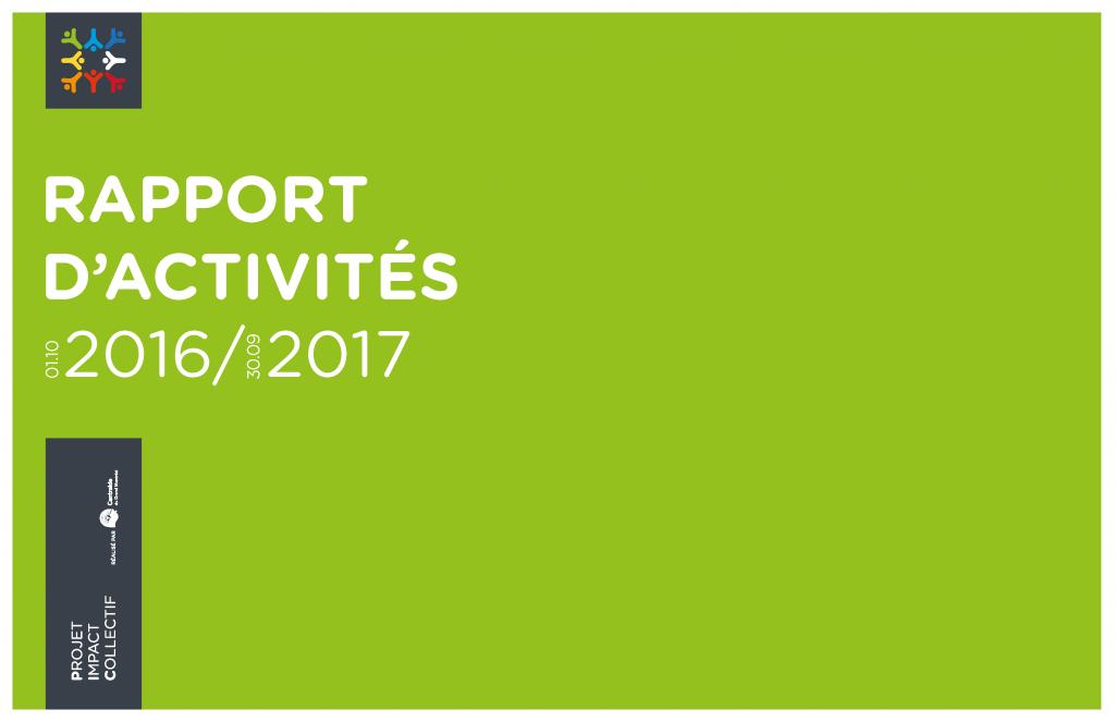 picrapportactivite_2016-2017