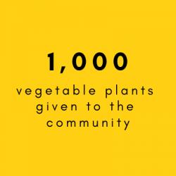 1000 plants EN
