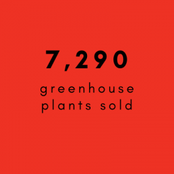 7 290 plants EN