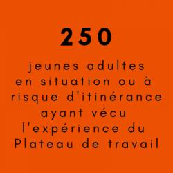 250 jeunes
